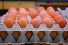 Vaječná tlačenka Ládi Hrušky za 126 Kč